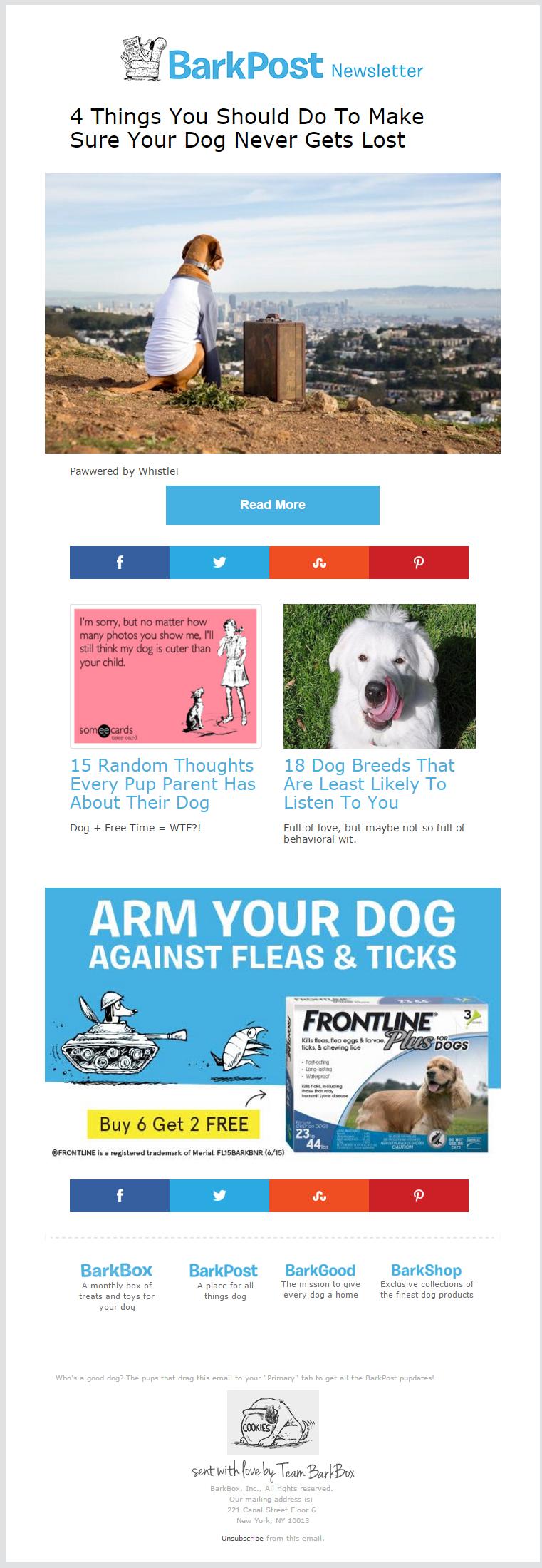 BarkPost newsletter 2015