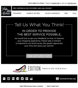 Saks Fifth Avenue survey email