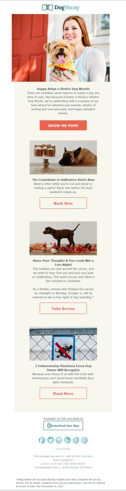 DogVacay newsletter