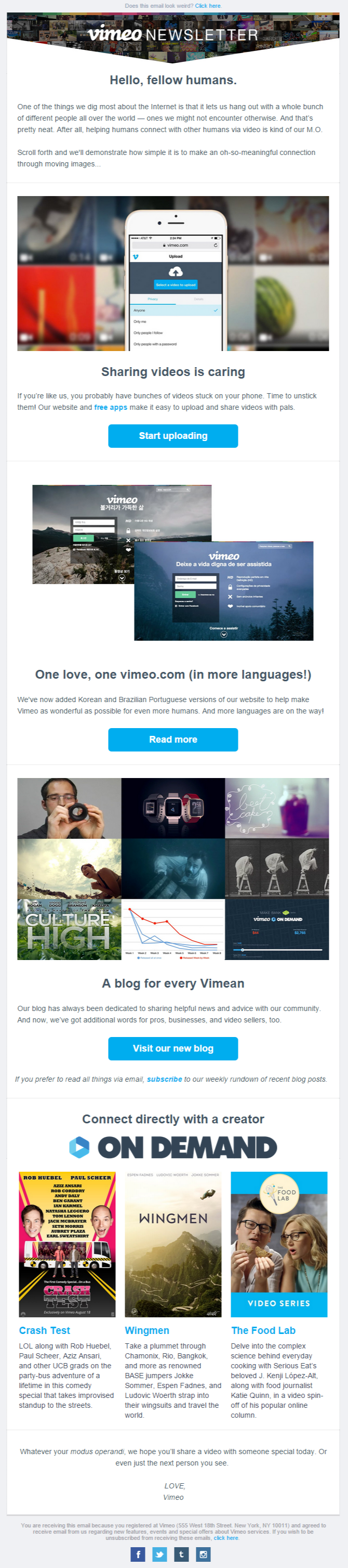 Vimeo newsletter
